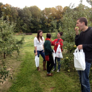 Apple picking with Julia, Mike, Maria and Lindsay