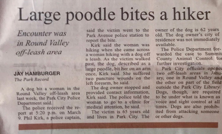 Poodle story