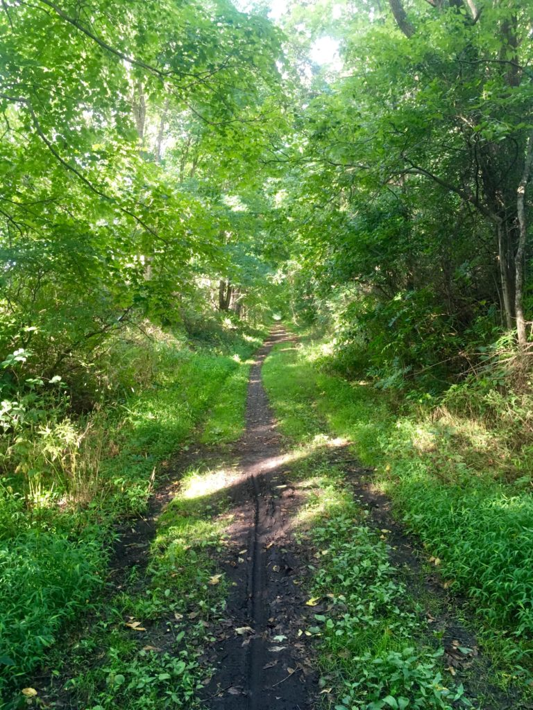 Paulinskill Valley Rail Trail