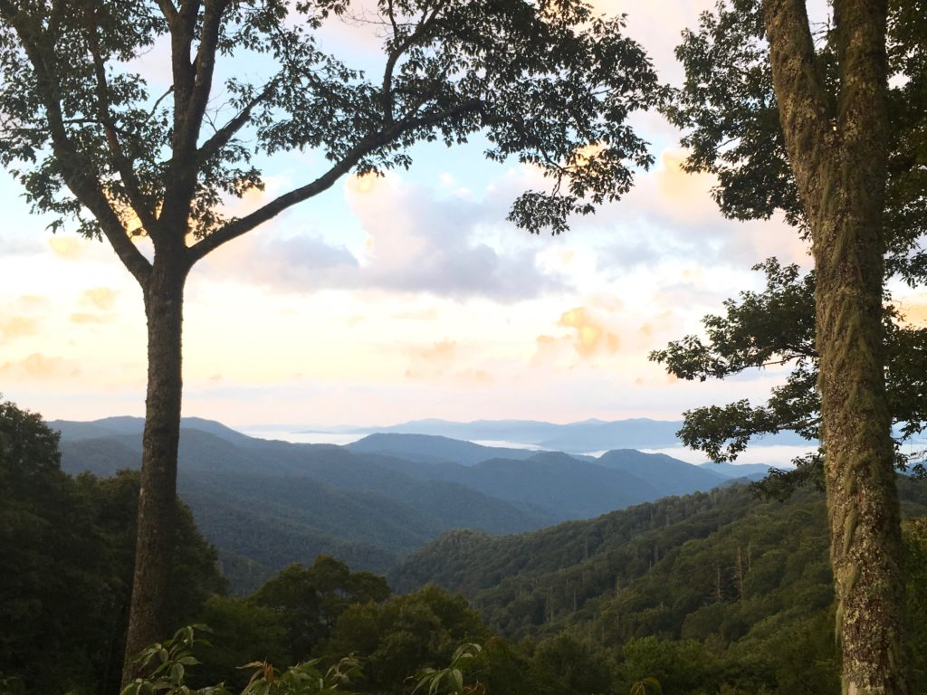 You can see why they call it Smoky Mountain National Park