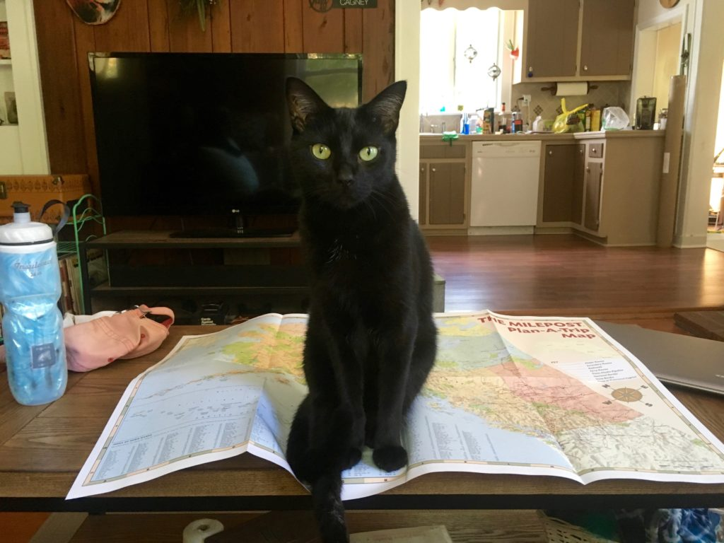 "Jeffery ""helping"" me plan a trip"